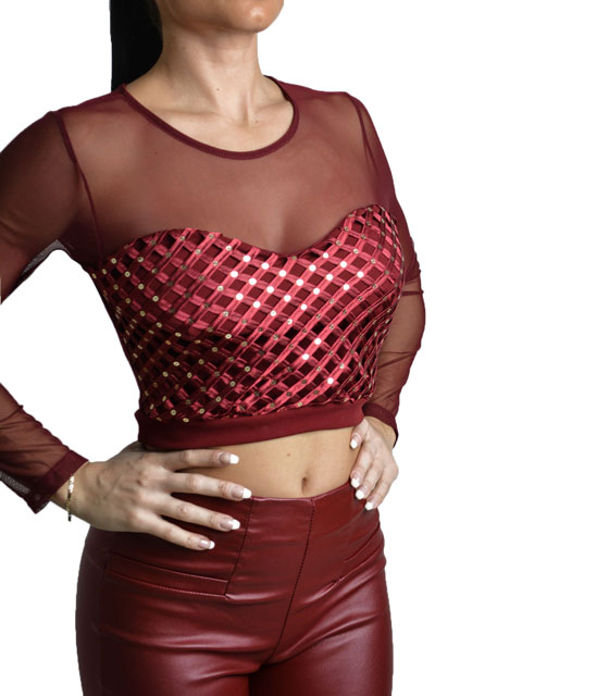 Sequin top with mesh details (burgundy)